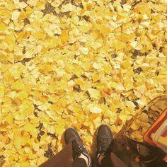 한국 도착! 와... 진짜 겨울이 오는구나 by aura_m_kr