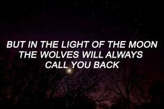 writing prompt Teen Wolf, Maia Roberts, The Ancient Magus Bride, Teen Tv, Scott Mccall, Out Of Touch, Verse, Intj, Writing Inspiration