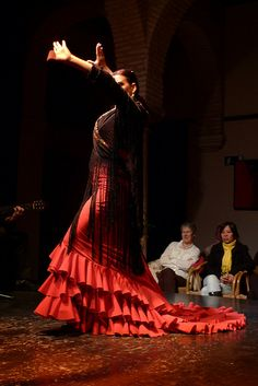 Flamenco ! ..... I love this dance, it's so fiery! it's an art, and this photo looks like a magnificent painting...