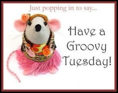 Image result for popping in to say happy Tuesday images