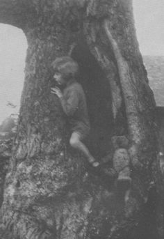 Christopher Robin Milne & Winnie the Pooh in Hollow tree Ca 1925