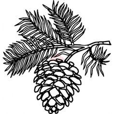 Image result for abstract pinecone sketch