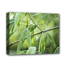 """Bamboo+Deluxe+Canvas+14""""+x+11""""+(Framed)+Deluxe+Canvas+14""""+x+11""""+(Stretched)"""