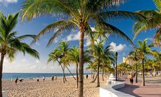 30 Best Fort Lauderdale Hotels on TripAdvisor - Prices & Reviews for the Top Rated Accommodation in Fort Lauderdale, FL