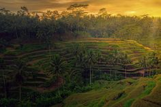 Morning Sunrise by Jeffri Jaffar  on 500px
