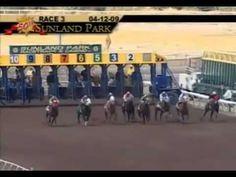 Quarter Horse World Record In 220 Yardas Travel Plan Http Youtu