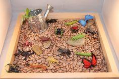 Bug/ Garden Sensory Bin by SensoryBins on Etsy Sensory Tubs, Sensory Boxes, Sensory Diet, Sensory Activities, Sensory Play, Summer Activities, Montessori, Daycare Spaces, Family Day Care