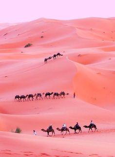 Tozeur, Tunísia. Pink desert