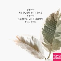 인연과 운명 Learn Korean, Wise Quotes, Affirmations, How To Memorize Things, Romantic, Messages, Writing, Education, Love