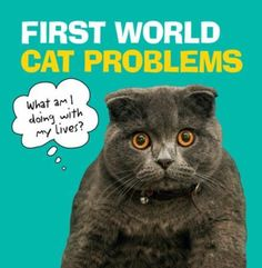 """Read """"First World Cat Problems What am I doing with my lives?"""" by Ebury Publishing available from Rakuten Kobo. Being woken from an nap by a car alarm. Fed tuna for dinner two days in a row. Going outside, only to realise ins. Celtic Baby Names, Question Of Sport, Sports Quiz, Baby Name Book, Pugs In Costume, World Cat, Penguin Random House, Life Humor, Little Books"""