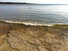 Fårö - havet en septemberdag. Foto: Åsa Bergquist