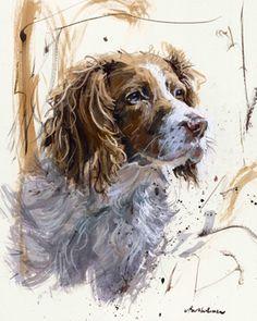 'Springer Spaniel'- james batholomew