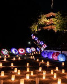 岡寺/光の回廊と和傘のライトアップ Beautiful Places In Japan, City Pride, Umbrella Art, Japanese Landscape, I Want To Travel, New Moon, Japan Fashion, Japanese Culture, Scenery
