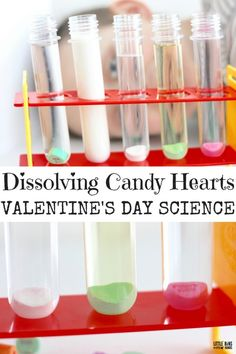 Dissolving candy hearts science experiment with different liquid solvents for a solubility activity