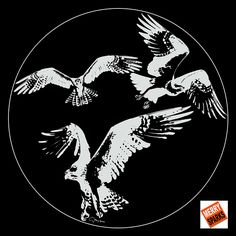 Gobo Eagle Filter