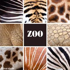 collage dierenhuiden