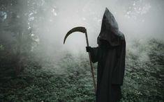 Strach jak ho překonat jednou provždy (krok za krokem) Halloween Fright Night, Halloween Film, Photo Halloween, Haunted Halloween, Shadow Silhouette, Forest Silhouette, Spooky Woods, Haunted Movie, Misty Forest