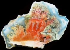 So beautiful - Mexican Agate