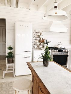 OUR FRIDGE IS IN!! Smeg Refrigerator Review