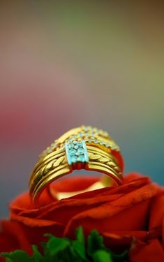 Wedding photography details rings Ideas for 2019 Indian Engagement Photos, Engagement Rings Couple, Wedding Engagement, Engagement Ideas, Engagement Ring Photography, Indian Wedding Couple Photography, Indian Wedding Rings, Indian Weddings, Wedding Ceremony Pictures