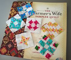 The farmer and his wife have been having babies: These mini Farmers Wife Sampler Quilt blocks, done with scraps from the big ones, will. Quilting For Beginners, Quilting Tutorials, Quilting Designs, Small Quilts, Mini Quilts, Patch Quilt, Quilt Blocks, Dear Jane Quilt, Farmers Wife Quilt