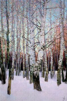 A superb oil painting of silver Birch trees in the snow of early winter a true artist who can paint white of new snow and the silver tones incurred of the tree bark very clever and tallented