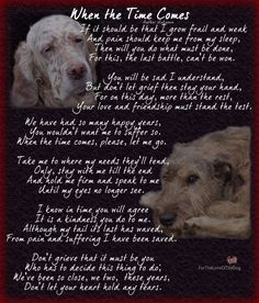 Canine Advocacy - I dedicate this to all those of you, who, with pain in your heart and knowing the grief to come, ga - I Love Dogs, Puppy Love, Pet Poems, Animals And Pets, Cute Animals, Pet Loss Grief, Loss Of Dog, Pet Remembrance, Dog Memorial