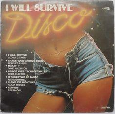 I Will Survive 70's Disco Hits Comp LP Gloria Gaynor Peaches Herb C w McCall | eBay