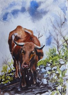 The Cow,ACEO collectible Card Original mini artwork in Watercolor Painting   #Realism