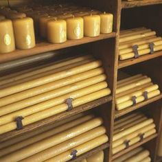 Santa Rosa Candles