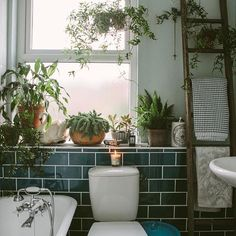 I D E A S Bathroom Plants If you don't have the patience to look after indoor plants now during the summeranother great place for plants is your bathroom.The moisture after a shower is perfect for Sweet Home, Bathroom Plants, Bathroom Green, Garden Bathroom, Jungle Bathroom, Bathroom Candles, Boho Bathroom, Bathrooms With Plants, White Bathroom