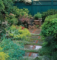 Groundcovers that hold up against light traffic can help take the hard out of hardscape. When allowed to fill seams along a narrow patio, they not only cushion the feet but are often accompanied by tiny seasonal blooms.