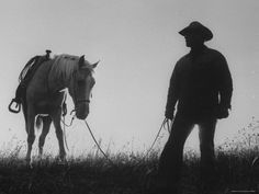 friends ... a man and his horse