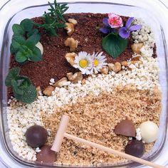 giardino zen di cioccolato