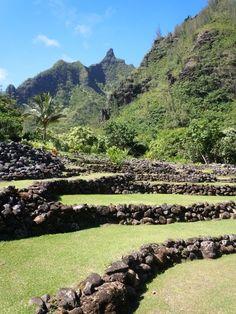 Garden, North Shore Kauai