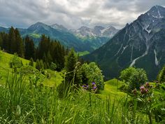 The Alps in Kleinwalsertal