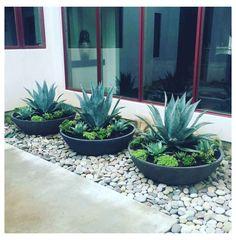 Backyard Renovations, Front Yard Design, Front Yard Landscape Design, Deck Design, House Design, Design Jardin, Xeriscaping, House Landscape, Desert Landscape