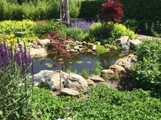 Diemelgroenvoorzieningen Bloeiendetuin met natuurlijke vijver en bijen en vlinder vriendelijke beplanting.