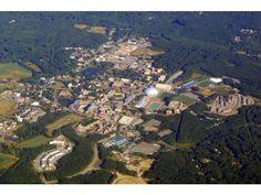 254 Best University of Connecticut images