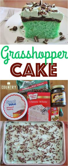 Grasshopper Cake is a green, minty cake topped with hot fudge sauce and whipped topping with sprinkles of Andes creme de menthe chocolates!