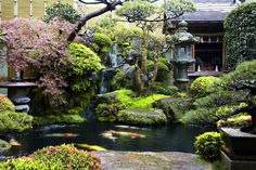 Typical Japanese House Garden in Kyoto