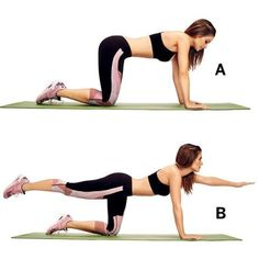 Core Exercises To Relieve Lower Back Pain - Bird Dog Exercise Lower Back Pain Exercises, Lower Back Muscles, Britney Spears, Bird Dog Exercise, Ab Moves, Core Exercises, Shoulder Muscles, Glute Bridge, Plank Workout