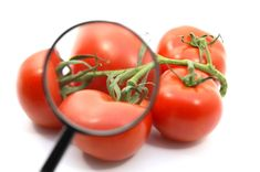 UECOOP in prima linea per sicurezza alimentare e trasparenza filiera