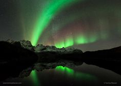 Lights over Lofoten II by Tommy Eliassen on 500px