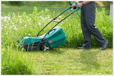 Photo about Gardener Male Mow Grass With Lawn Mower In His Sunny Summer Garden. Image of male, lawnmower, springtime - 101729152 No Mow Grass, Summer Garden, Lawn Mower, Outdoor Power Equipment, Modern Design, Stock Photos, Blog, Image, Gardens