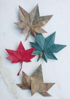 Origami Virágok 花 This Week in Origami Autumn Leaves Edition origami Autumn Edition Leaves Origami origami decoration Virágok Week 花 Diy Origami, Cute Origami, Origami Butterfly, Paper Crafts Origami, Origami Design, Paper Crafting, Dollar Origami, Origami Wall Art, Origami Ideas