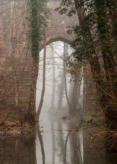 ~ Living a Beautiful Life ~ Artist: Bulent Ozgoren Aquaduct, Kurt Kemeri - Istanbul, Turkey Mystical Forest, Paper Birds, Land Of Enchantment, Grand Entrance, Far Away, Life Is Beautiful, Mists, Cool Pictures, Istanbul Turkey