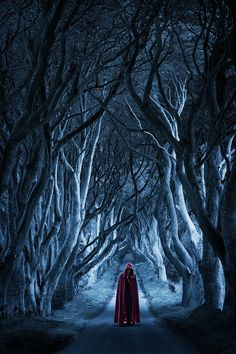 """Opening to my new Verse Tale, """"Red Cap"""", loosely based on Red Riding Hood, a Dark retelling of the Classic Tale. Fantasy Magic, Fantasy World, Dark Fantasy, Fantasy Art, Nocturne, Dante Alighieri, Dark Forest, Magical Forest, Gothic Art"""