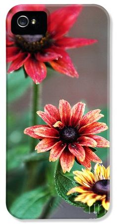 Three Flowers iPhone and Galaxay Case by John Rizzuto