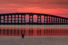 On my birthday, I chose to visit the Outer Banks for a few days. The Outer Banks have been a favorite vacation destination for our family for many years. On this special evening, my husband and I enjoyed a beautiful sunset at the Bonner Bridge near Oregon Inlet. I also enjoyed photographing the fisherman along with the cars of families awaiting their special time to make memories on the Outer Banks.  Sharon Canter photo